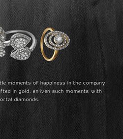 Bangles offers in the Tanishq catalogue in Delhi