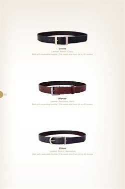Belt offers in the Hidesign catalogue in Delhi