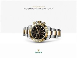 Offers from Rolex in the Delhi leaflet