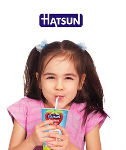 Supermarkets offers in the Hatsun catalogue in Delhi ( 11 days left )