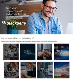 Blackberry catalogue in Aurangabad ( More than a month )