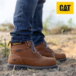 Offers from Caterpillar footwear in the Delhi leaflet