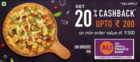 Domino's Pizza coupon ( 17 days left )