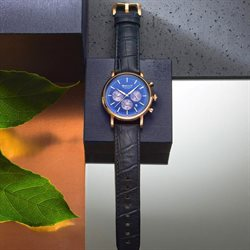 Watch offers in the GANT catalogue in Loni