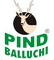 Information and hours of Pind Balluchi